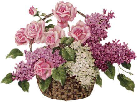 Tube fleures for Bouquet de fleurs lilas